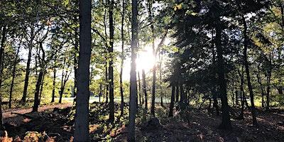 Langley+Park+Practical+Conservation+Volunteer