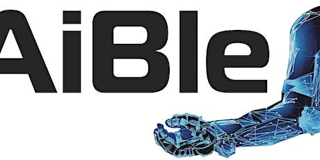 EU Interreg AiBle Human-Robot Interaction for Rehabilitation Webinar entradas