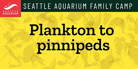 Seattle Aquarium Family Camp: Plankton to Pinnipeds tickets