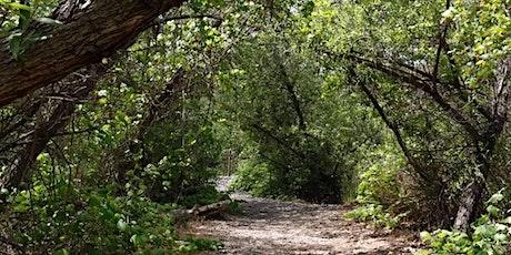 Santiago Oaks Regional Park Guided Hike tickets