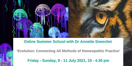 Evolution: Connecting All Methods of Homeopathic Practice tickets