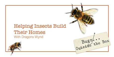 Helping Insects Build Their Homes, with Dragons Wynd tickets