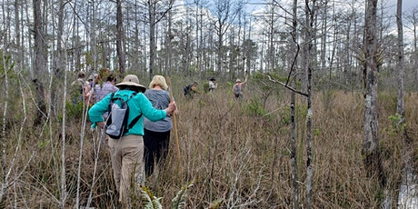 Adventure Awaits - Swamp Tromp at Pine Glades Natural Area tickets