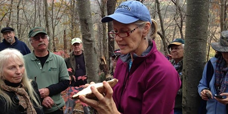 Introduction to Wild Mushrooms Foray tickets