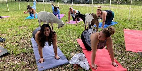 Goat Yoga: *select Saturdays & Thursdays* tickets
