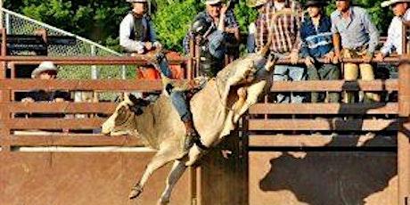 Douglas County Fair Bull Bash tickets