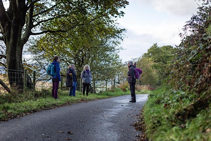 Mindfulness Retreat Walk: Melin y Wig - Full-day image