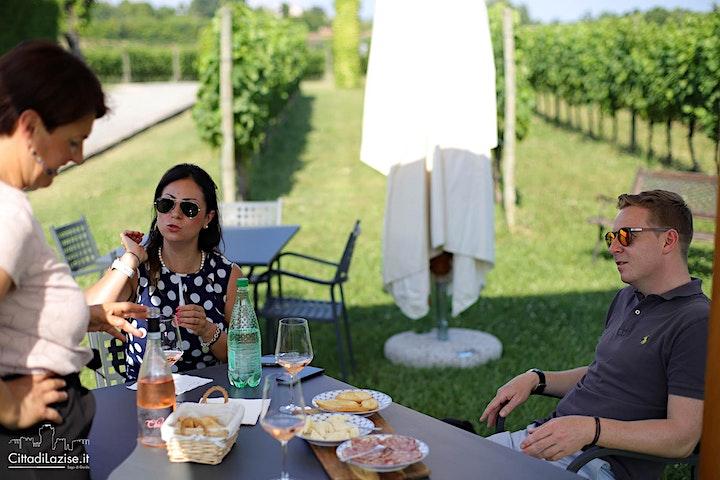 Immagine Visita in cantina e degustazione vini in vigneto a Lazise