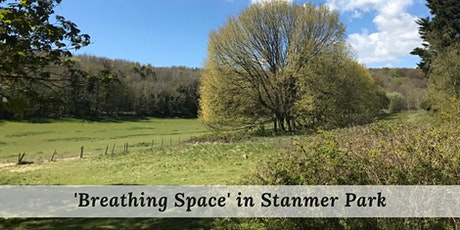 Forest Bathing in Stanmer Park tickets