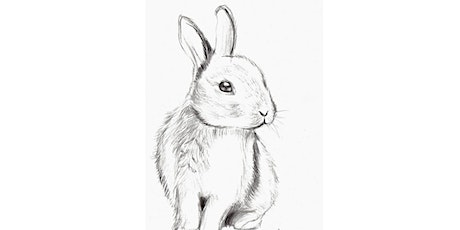 60min Animal Pencil Sketching Art Lesson - Rabbit @3PM (Ages 6+) tickets