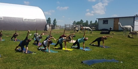 Yoga At The Alice Sanctuary tickets