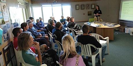 How to protect New Zealand taonga, kauri trees tickets