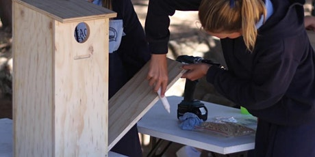 Build a nest box for your garden tickets