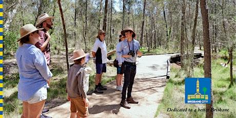 Family Adventure Walk in the Wetlands tickets