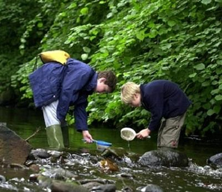 River Dipping image