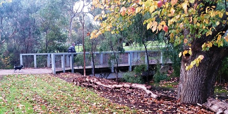 Guided walk through King Rodney Park / Ityamai-itpina (Park 15) tickets