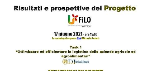 Risultati e prospettive del  Progetto  FILO biglietti