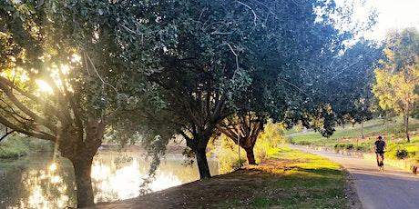 Guided Walk through Bonython Park / Tulya Wardli (Park 27) tickets