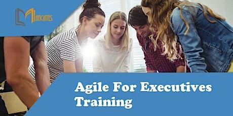 Agile For Executives 1 Day Training in Sao Luis ingressos