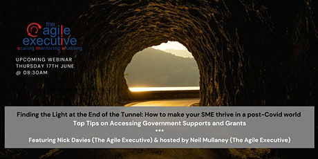 Top Tips on Accessing Government Supports and Grants tickets