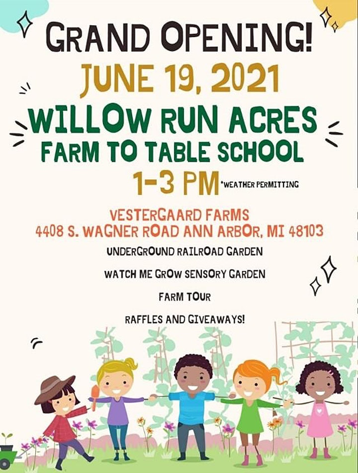 Willow Run Acres Juneteenth Grand Opening Fundraiser image