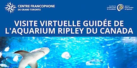Sortie virtuelle de Ripley's Aquarium biglietti