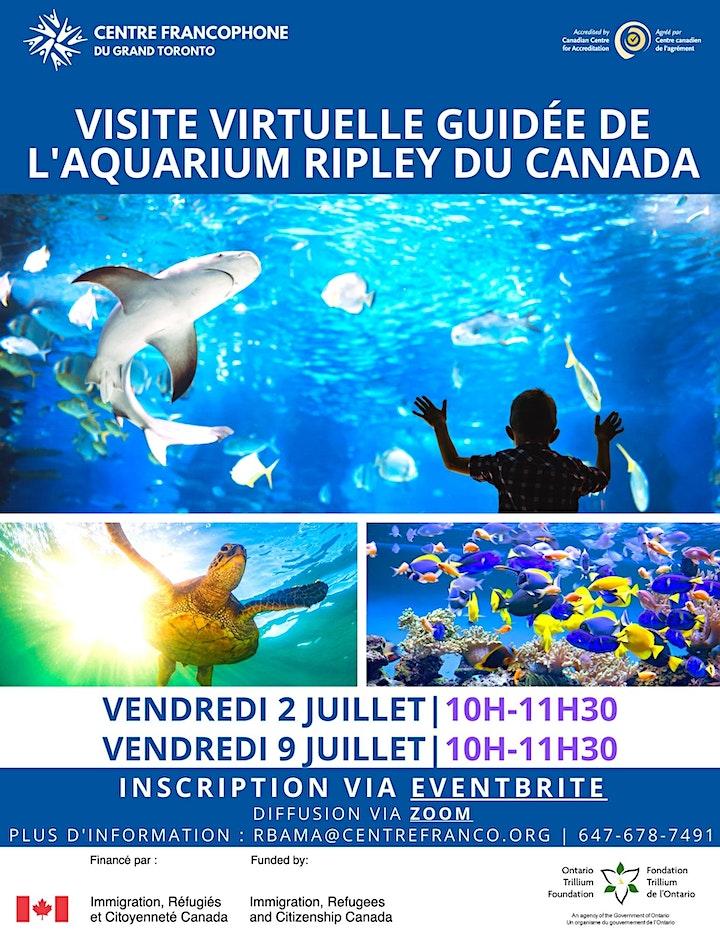 Sortie virtuelle de Ripley's Aquarium image