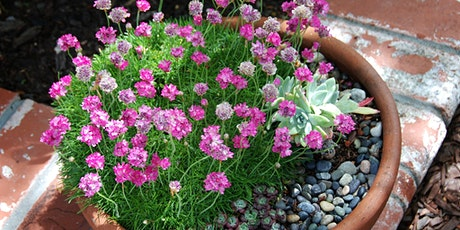 California Native Container Plants with Flora Ito tickets