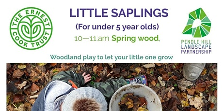 FULLY BOOKED Mini LITTLE SAPLINGS - Spring Wood, Whalley tickets