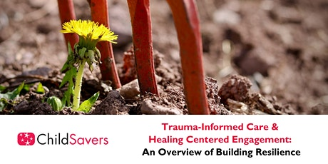 Trauma-Informed Care & Healing Centered Community Engagement tickets