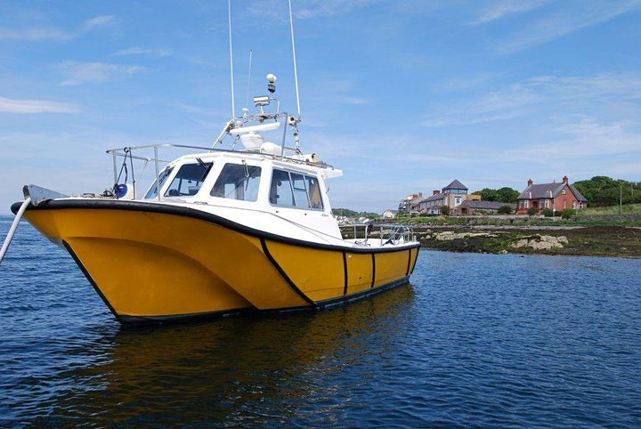 BOAT CRUSIES STRANGFORD LOUGH - Experience Wildlife Scenery, WinterFell GOT image