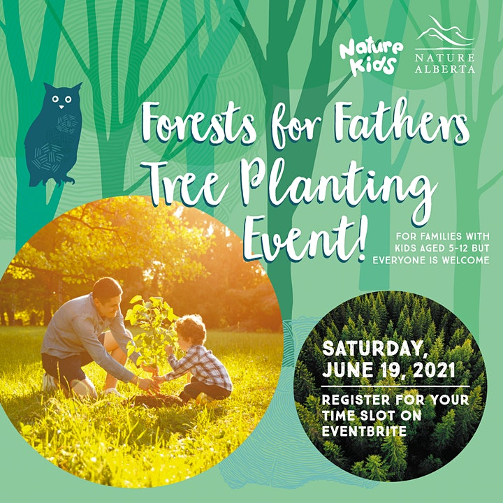 Forests for Fathers image