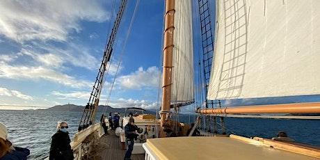 Marine Wildlife Observation Sail aboard brigantine Matthew Turner tickets