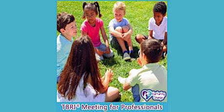 TBRI Monthly Meeting with Nurturing Change tickets