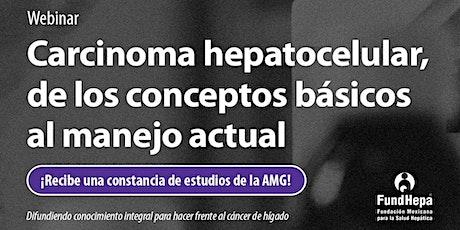 Carcinoma hepatocelular, de los conceptos básicos al manejo actual. entradas