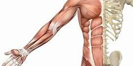 Muscle/Skeletal Wellness Workshop tickets