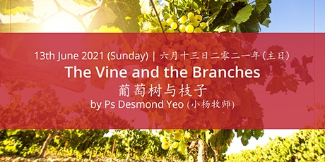 The Vine and the Branches tickets