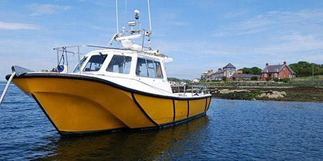 BOAT CRUSIES STRANGFORD LOUGH - Experience Wildlife Scenery, WinterFell GOT tickets
