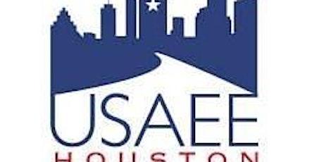"""USAEE, July 1, 2021 - """"Tech mega trends in long-term energy  scenarios"""" entradas"""
