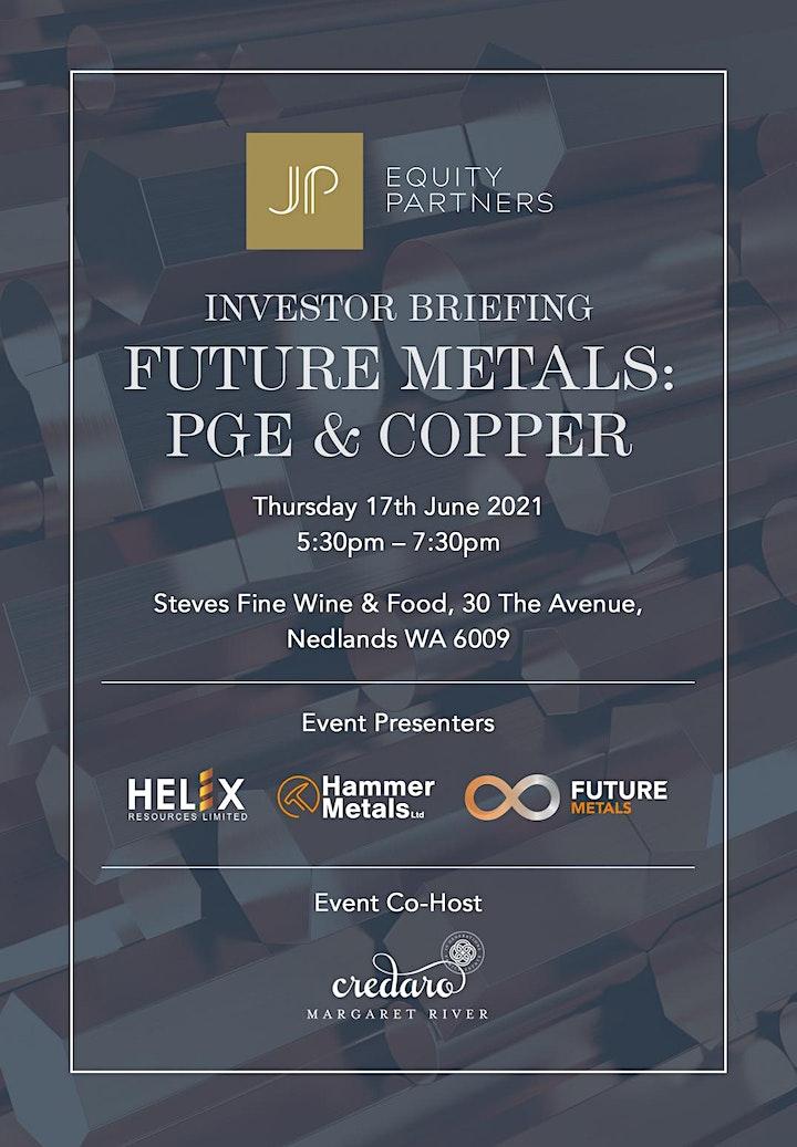 Investor Briefing 'Future Metals: PGE & Copper' image