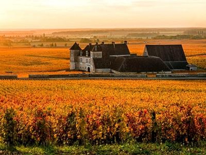 THE GREAT DOMAINES OF BURGUNDY | MyiCellar 雲窖 image