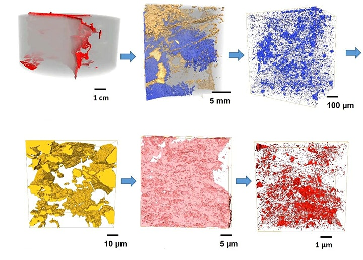 Multi-scale imaging and image-based modelling of heterogeneous materials image