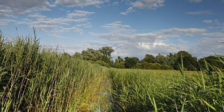Guided Walk at Woodwalton Fen National Nature Reserve tickets
