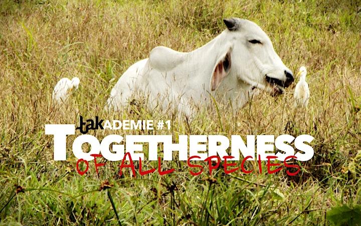 takADEMIE #1: TOGETHERNESS Konferenz: Bild