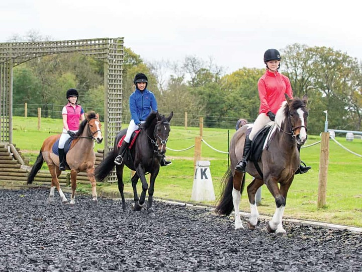 Equestrian Insurance in Ireland, whats the story image