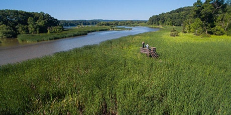 Speaker Series: The Cootes to Escarpment Ecopark System tickets