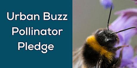 The Urban Buzz Pollinator Pledge and gardening for pollinators tickets