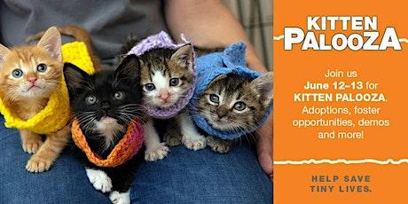 kitten-palooza tickets