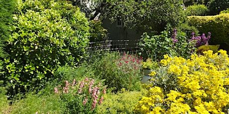 Gardens: A Vital Refuge for Pollinators tickets