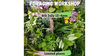Wild food foraging workshop tickets